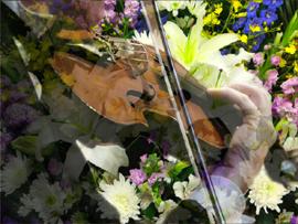 音楽葬こそ本物の音楽で